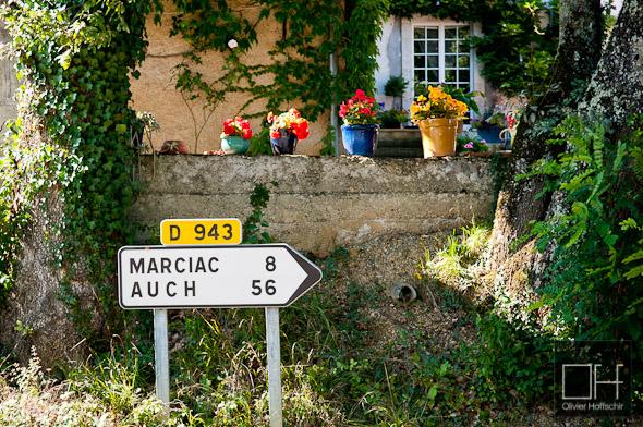 Jazz in Marciac - Ambiance